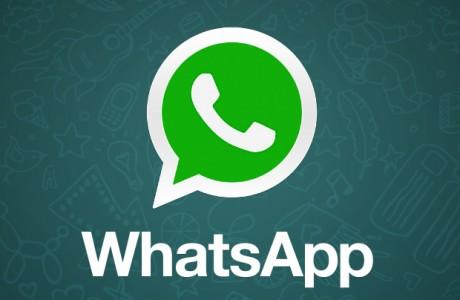 Whatsapp'dan Yeni Uygulama WhatsDog