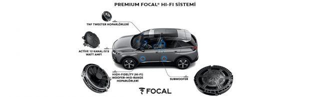 focal-96088-43