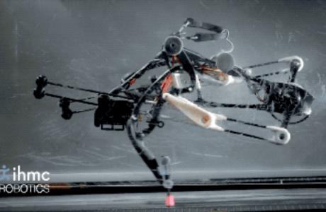 Mekanik Deve Kuşu Robotu Doğal Olarak Dengede Duruyor