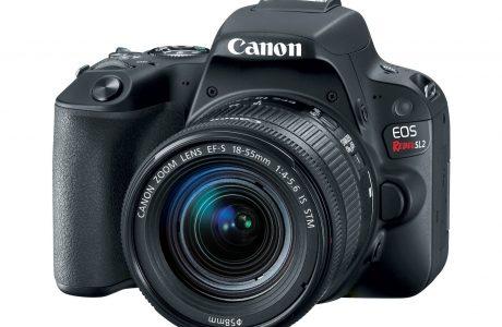 Yeni Canon EOS Rebel SL2 DSLR, Hafif ve 24.2 MP CMOS ile Geliyor